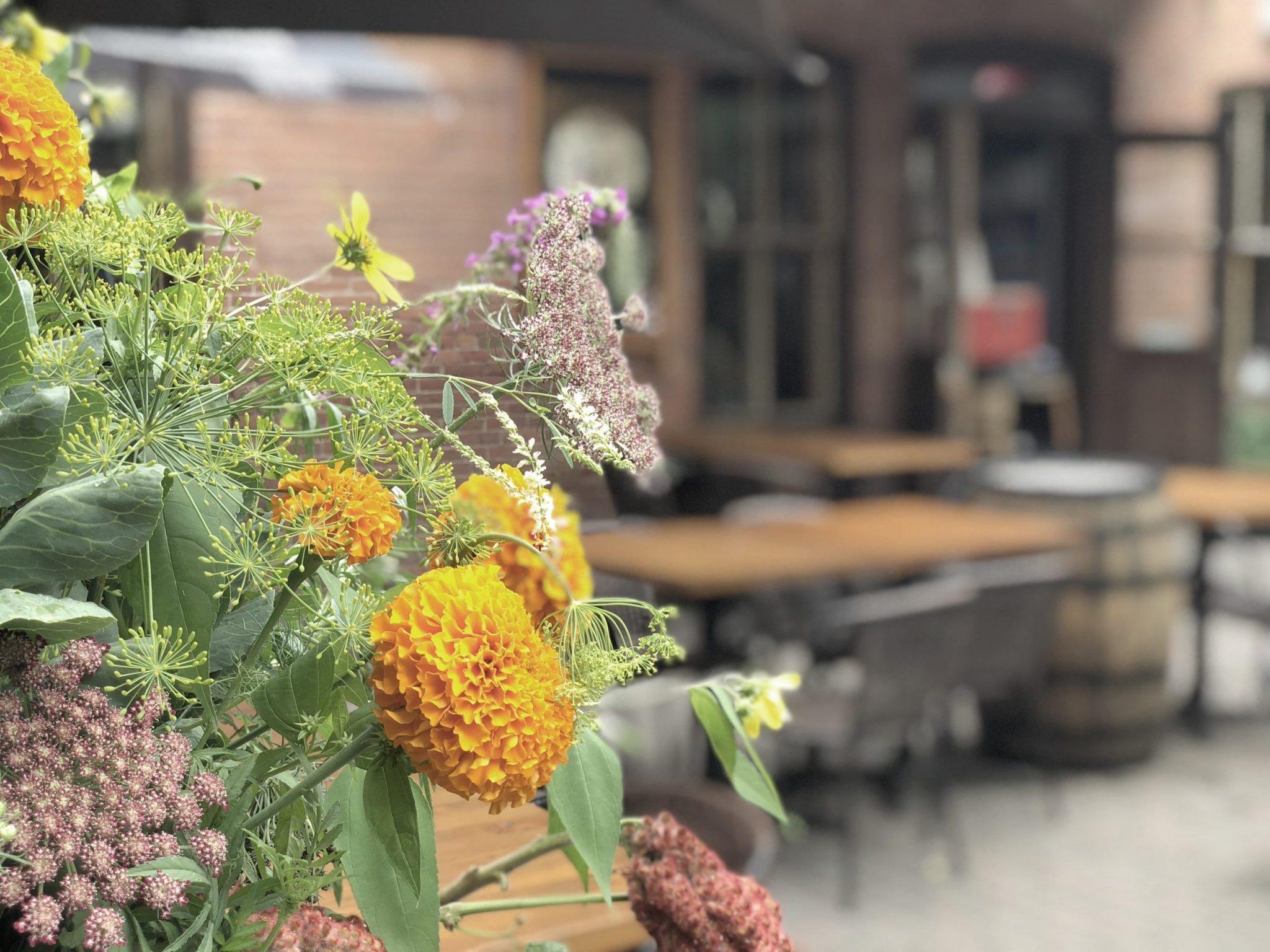 Table_Boho Boutique Hostel - _Dunham