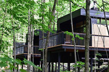 Cabin Sutton