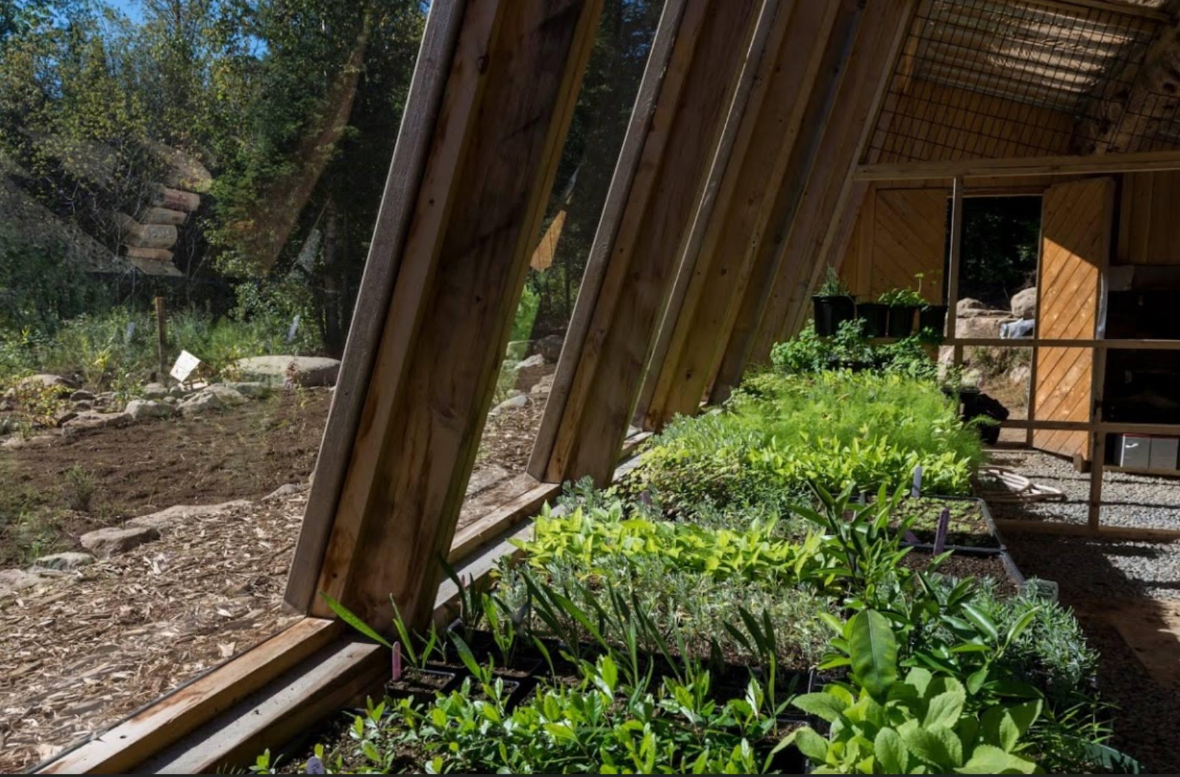 Activité de permaculture chez Terra Perma